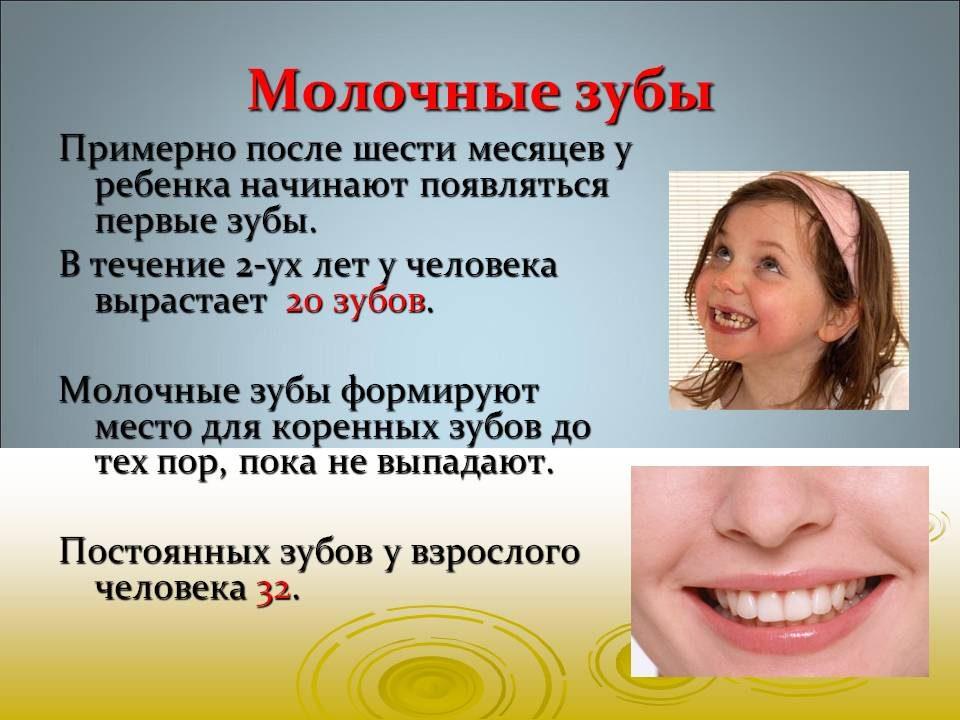 bajsakova_sofiya_04