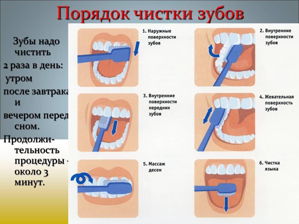 bajsakova_sofiya_19