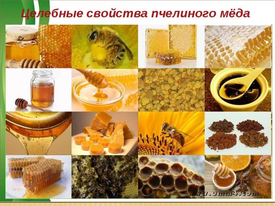 honey_07