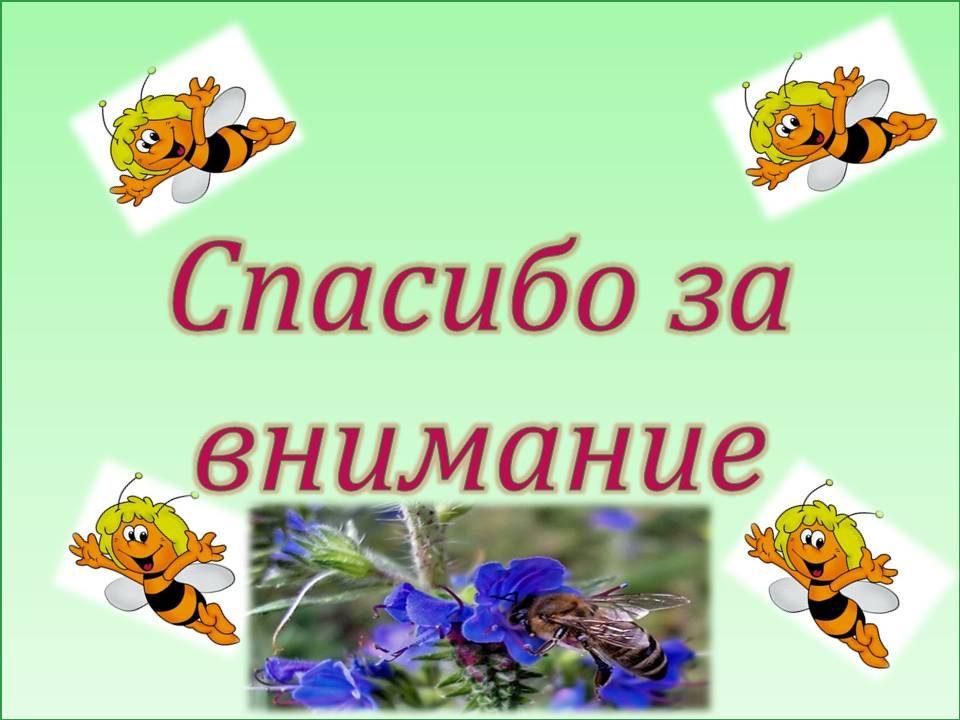 honey_20
