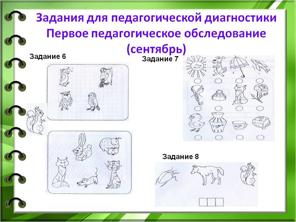 pedsovet_13_12_13_11