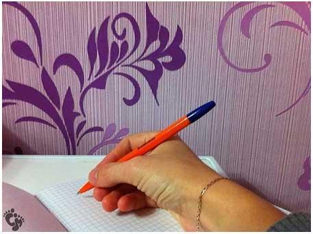 pen010
